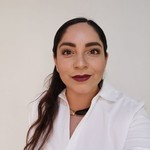 Asesor ANA LAURA RAMÍREZ GARCÍA