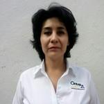 Asesor ING. Yoloxochitl Torres Irigoyen