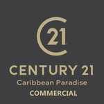 Asesor CENTURY 21 COMMERCIAL