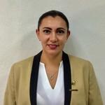 Asesor Bertha Alicia Flores